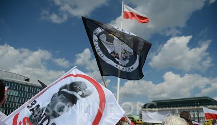 Польша, Бандеровцы, Неонацизм на Украине, Мнение украина
