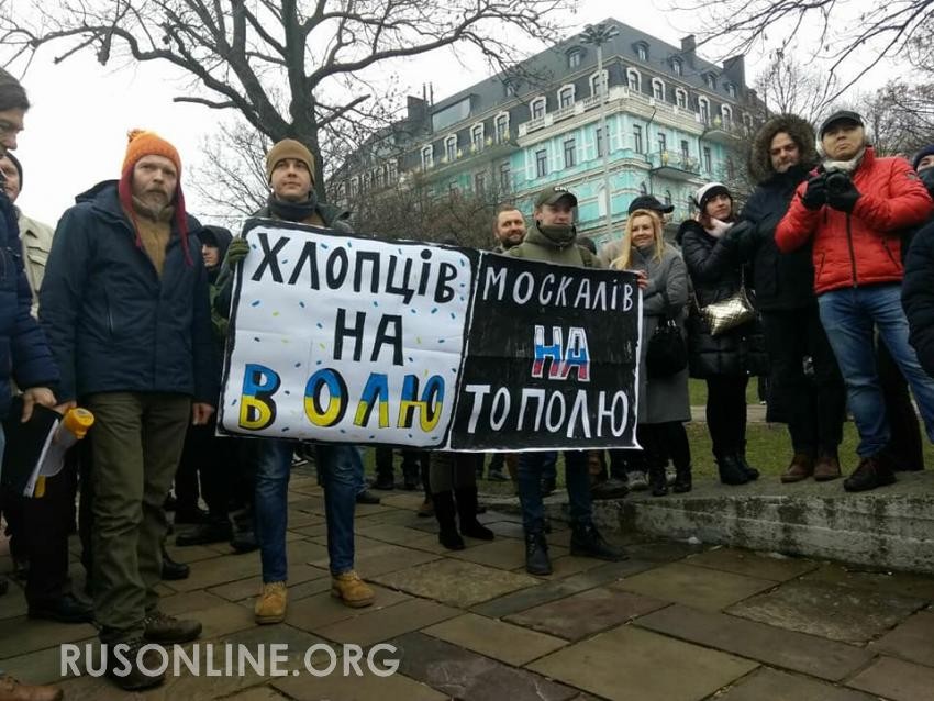 Неонацизм на Украине, Украина